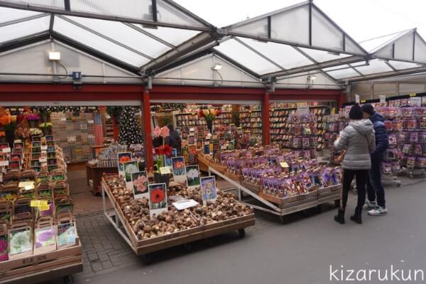 アムステルダム1日観光で行った花市場